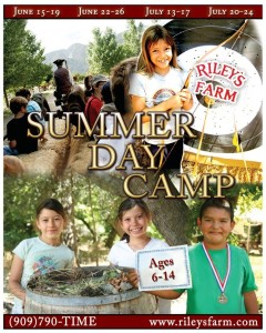 Summer Day Camp at Riley's Farm