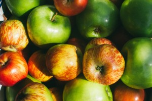Assorted apples CU by Megan Laurie