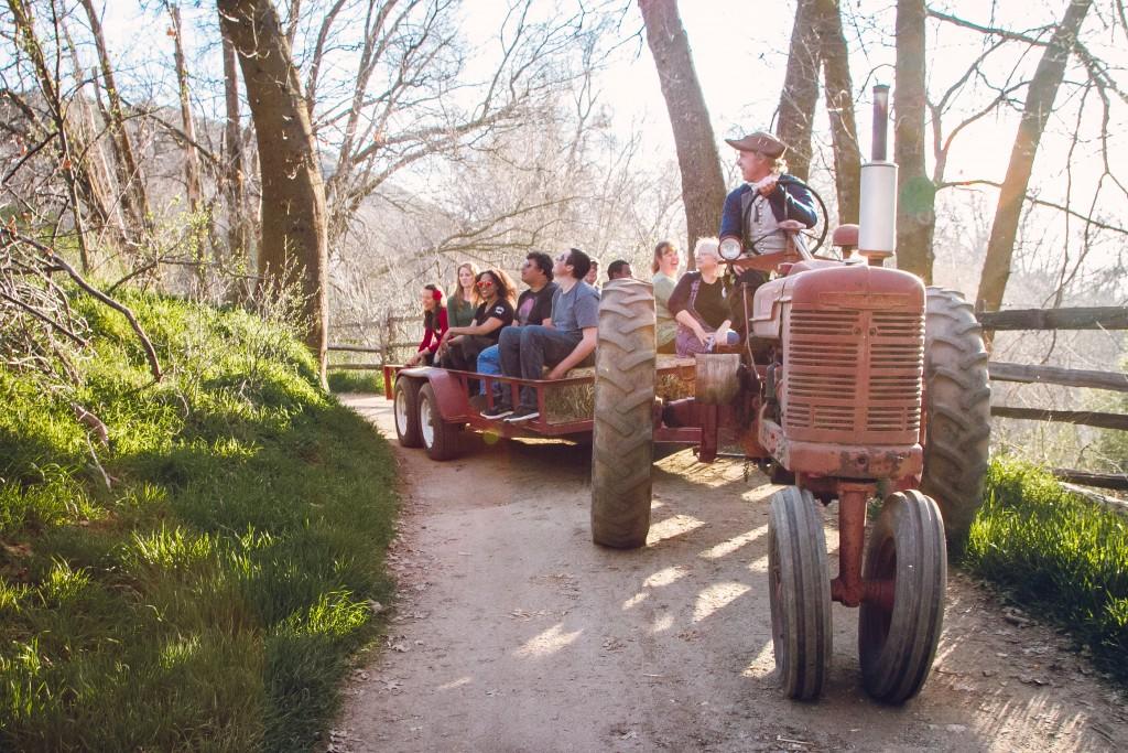 TractorHayride(15of17)